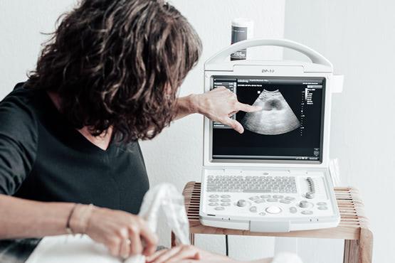 Echtzeit Ultraschall